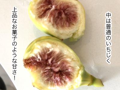 fruit20181-4