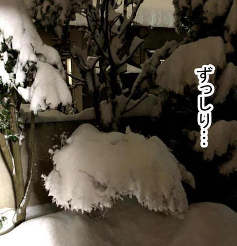 snow1-7