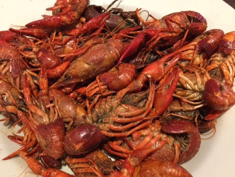 crawfish20171-5