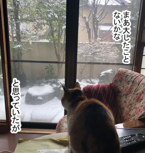 snow1-5