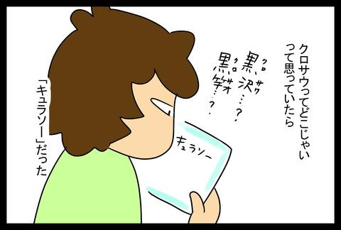 kurosawa1-5