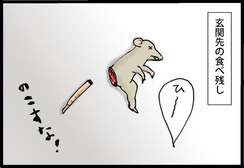 nekochan2-8