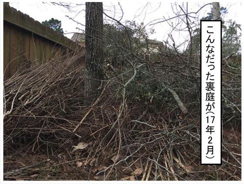 niwa20181-4