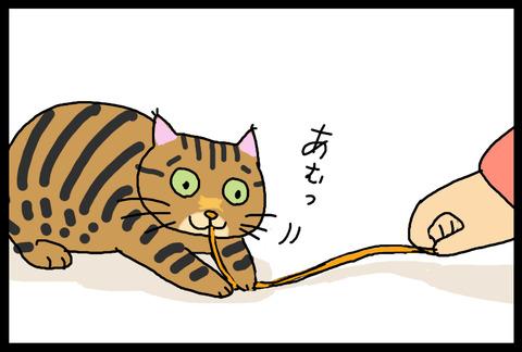 nekochanoyatsu1-4