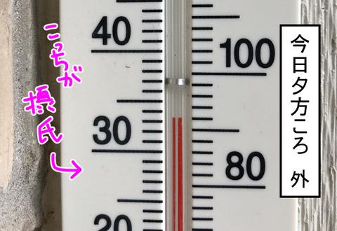 niwa20181-1