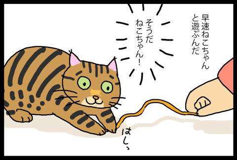 nekochanoyatsu1-2
