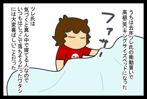 bed1-1