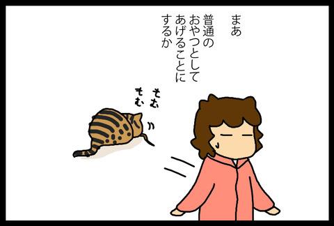 nekochanoyatsu1-7