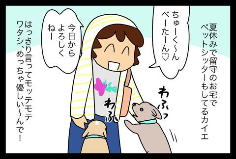 dogsitter1-2
