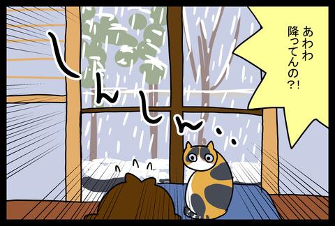 snow1-4