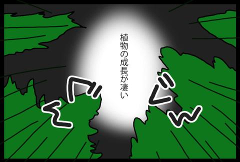 niwajijou3-3