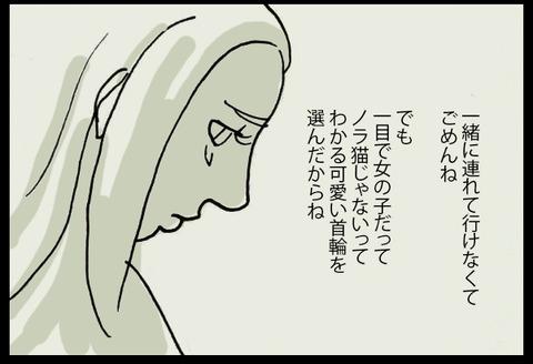 nekochanhimitsu5-2