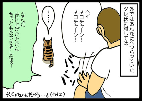 nekochanhimitsu6-6