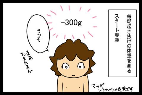 apple1-1