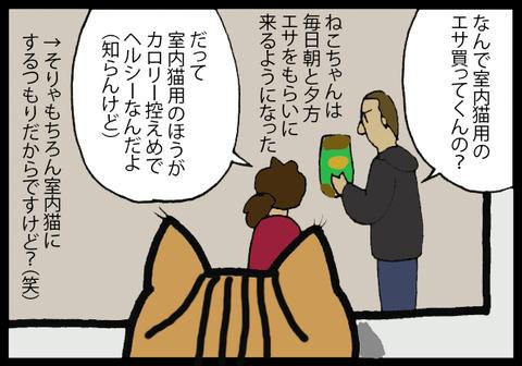 nekochanhimitsu6-2