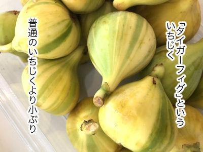 fruit1-3