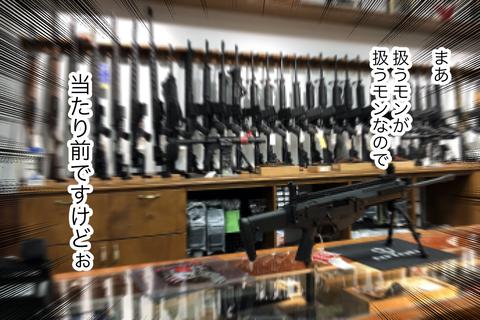 gun1-7