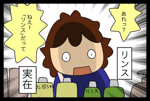 rinse1-4