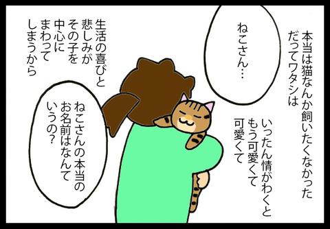 nekochanhimitu2-4