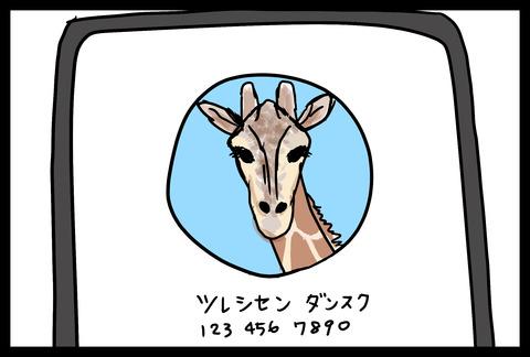 giraffe1-3