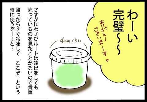 wasabi1-3