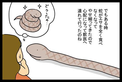 snake1-3