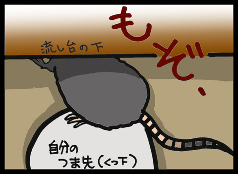 nezumi1-1