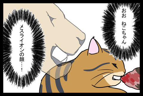catfood1-8
