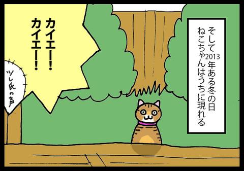 nekochanhimitsu6-1