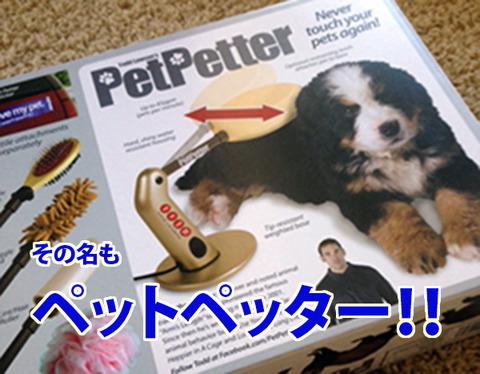 petpetter1-3