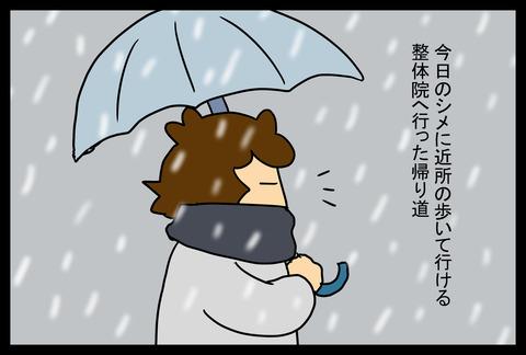 snow3-6