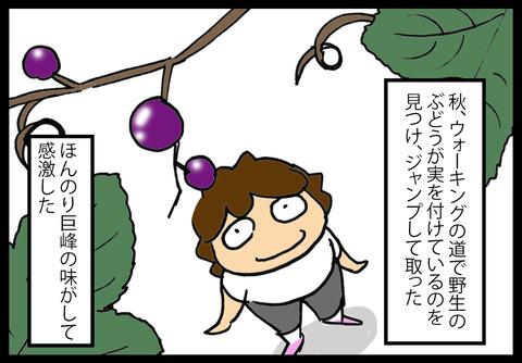 grapes1-3