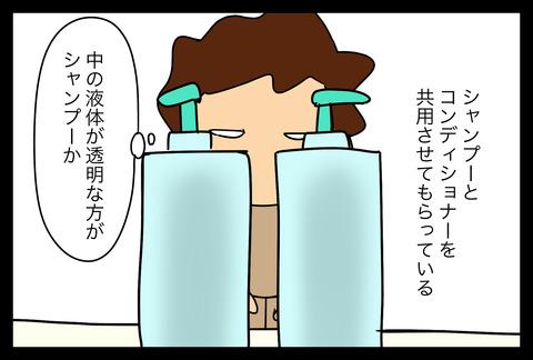 shampoo1-3