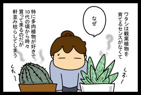 plants1-1
