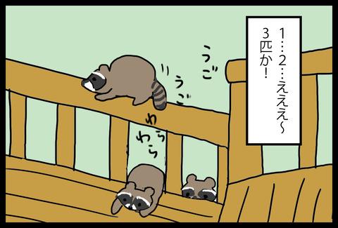 wildlife3-2