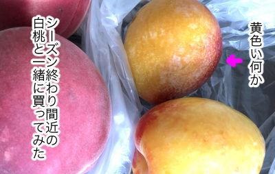fruit20181-1
