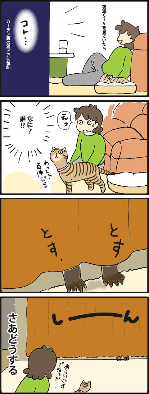 wildlife1-1