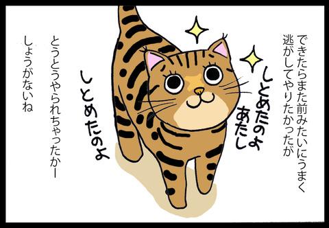 kowaikamo3-4