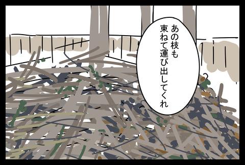 niwa20186-4
