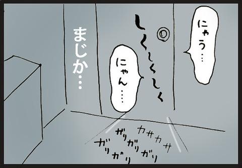 tadaimaneko3-3