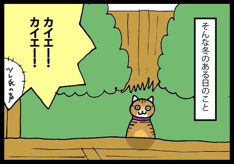 nekochan5-4
