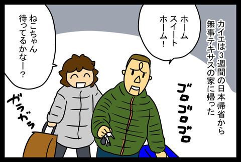 home1-1