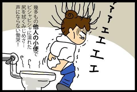 toiletusa1-5