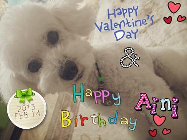 aini birthday 2013