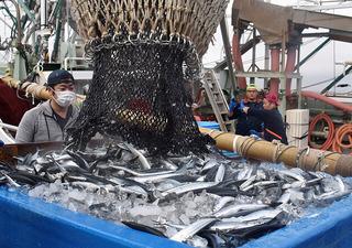 銚子漁港202010