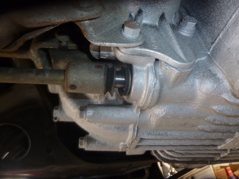 P1050954
