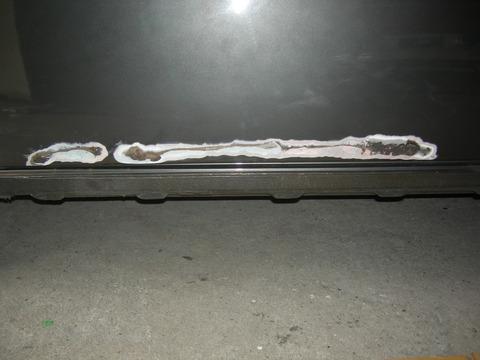 DSCN5310