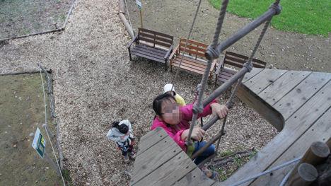 地上12mの森を冒険するフォレストアドベンチャーがお勧め!3