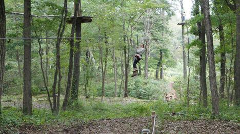 地上12mの森を冒険するフォレストアドベンチャーがお勧め!10