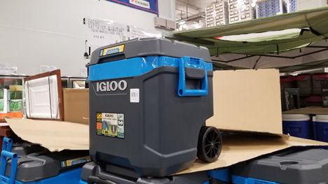 igloo(イグルー) マックスコール クーラーボックス62QT
